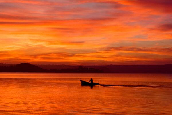 Fisherman on Lake Bolsena